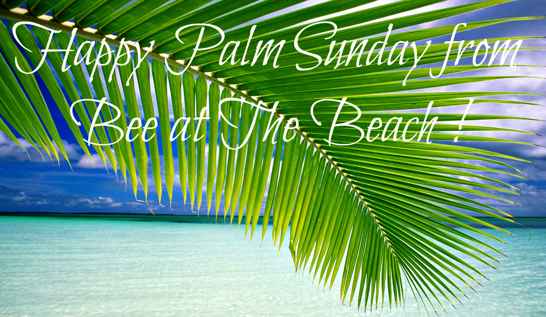 Palm_Sunday_from_Bee_at_Beach